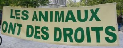 DECLARATION UNIVERSELLE DES DROITS DE L ANIMAL 18657910