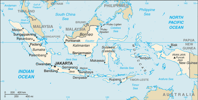 JAMU » LA MÉDECINE TRADITIONNELLE INDONÉSIENNE Indone10