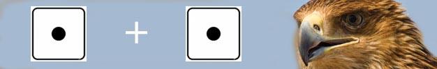 la kybomancie - Divination avec 2 dés Offici11