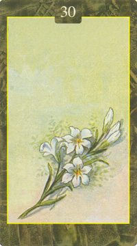 Oracle Lenormand Lo Scarabeo Oracle44