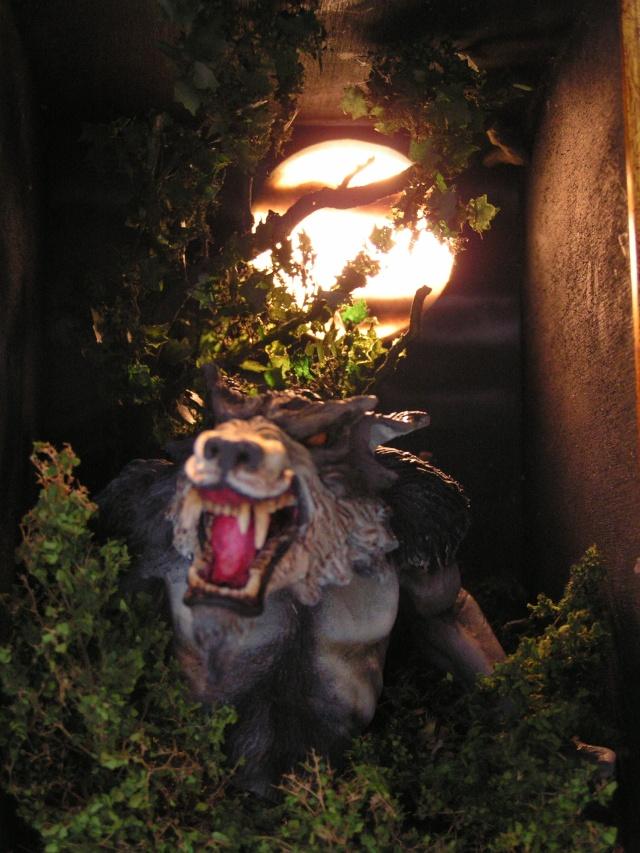 Loup garou Pict0015