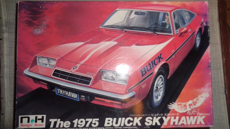 BUICK SKYHAWK 1975 Doyusha Dsc01410