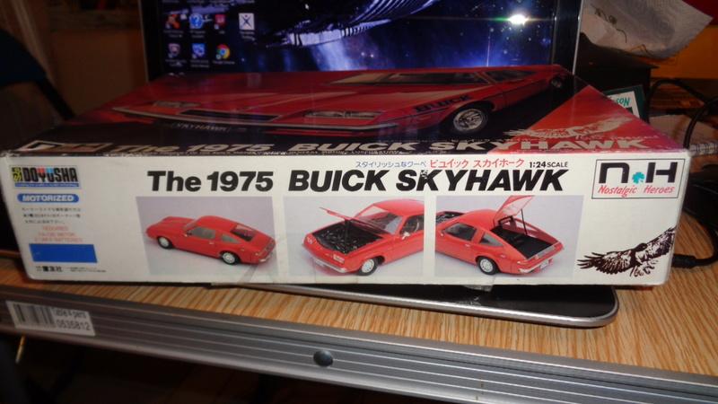 BUICK SKYHAWK 1975 Doyusha Dsc01420