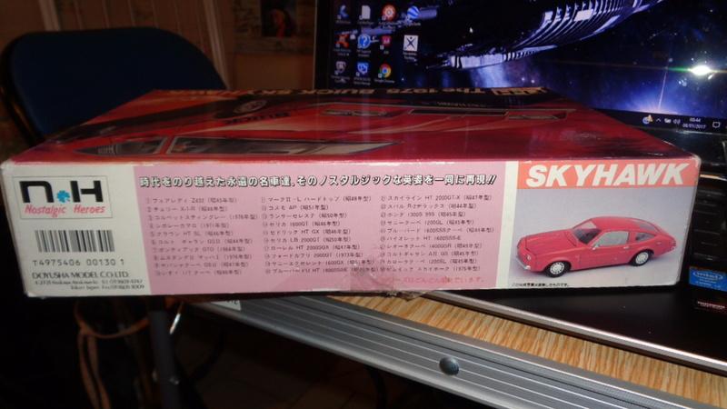 BUICK SKYHAWK 1975 Doyusha Dsc01421