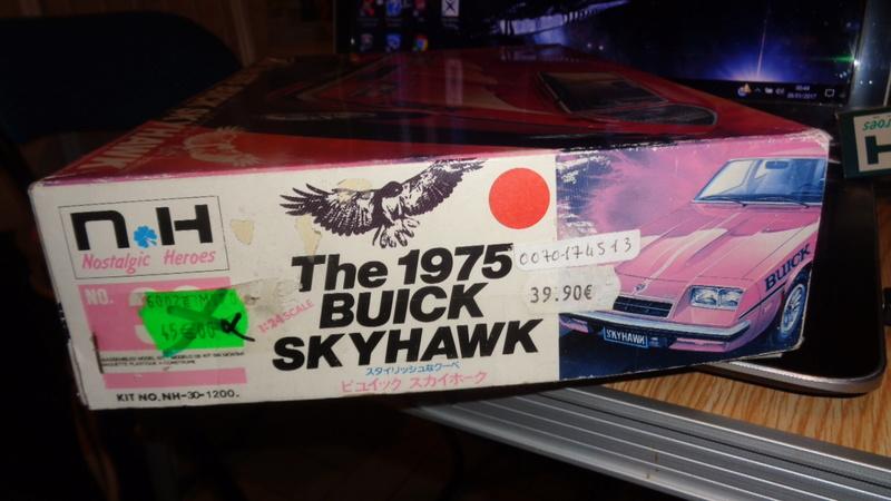 BUICK SKYHAWK 1975 Doyusha Dsc01422