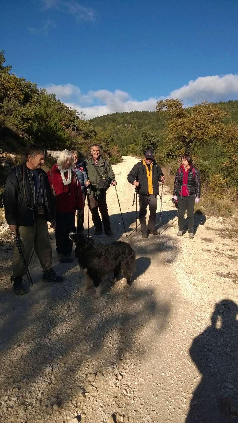 Jolie randonnée autour de plusieurs aiguiers...et cabanons pointus dits Bories Aiguie58