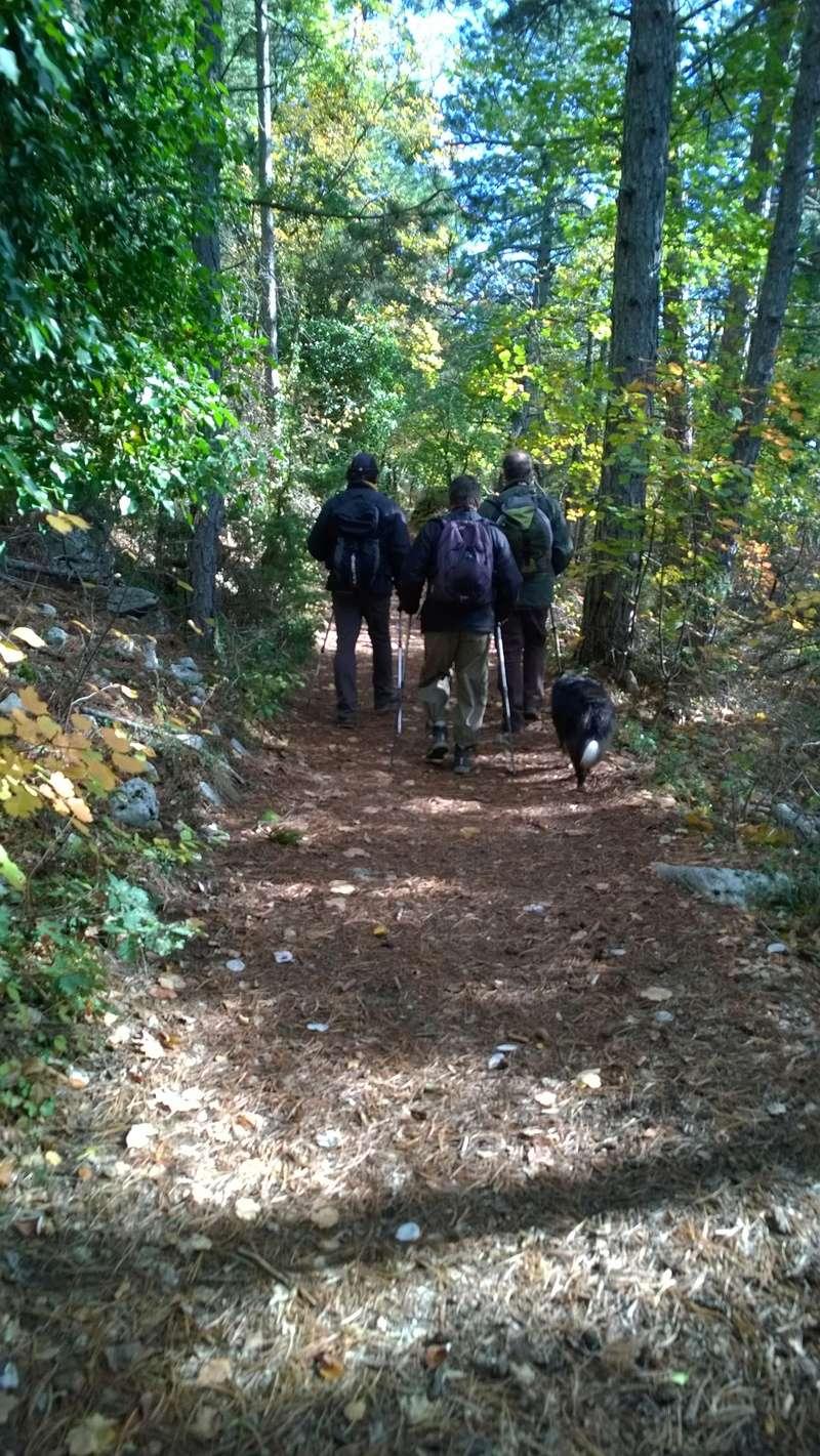 Jolie randonnée autour de plusieurs aiguiers...et cabanons pointus dits Bories Aiguie60