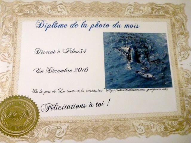 Félicitations au vainqueur de décembre Diplom11