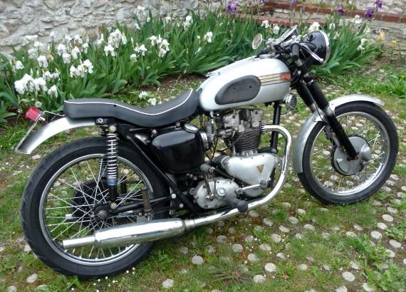 Galerie motos des fofoteurs * Triump13