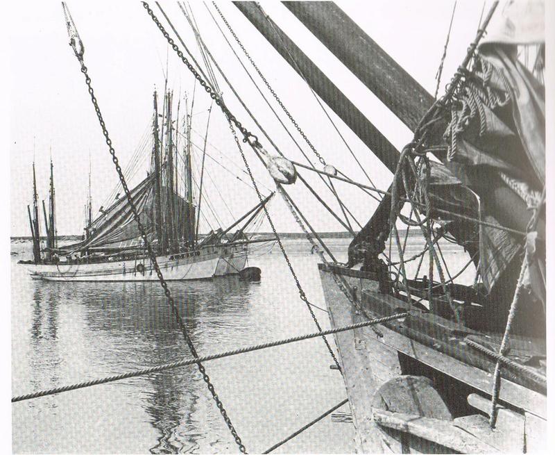 Thonier* - La Marie Jeanne Thonier Billing boats au 1/50 - Page 5 Bout_d11