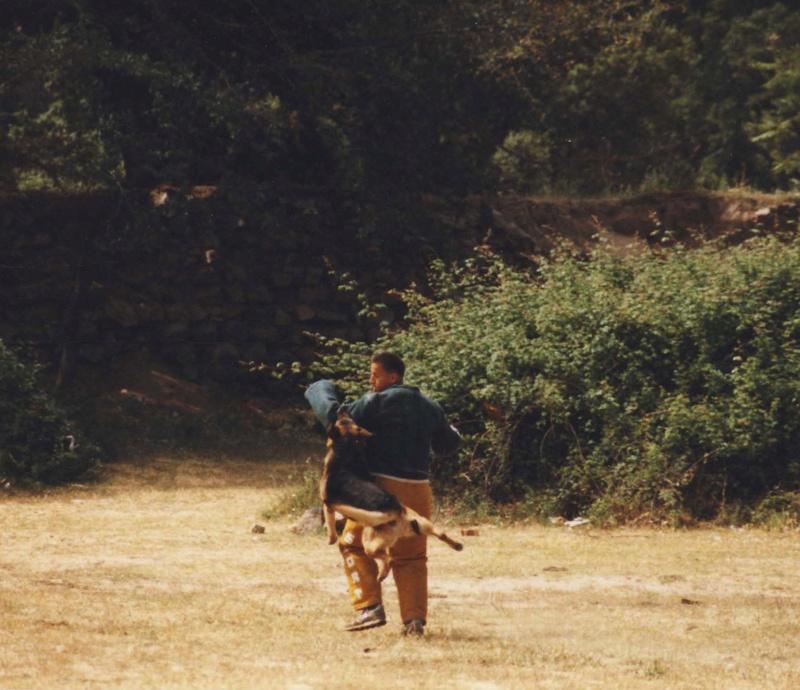 BAN ASPRETTO 1986-1989 Cotti_11