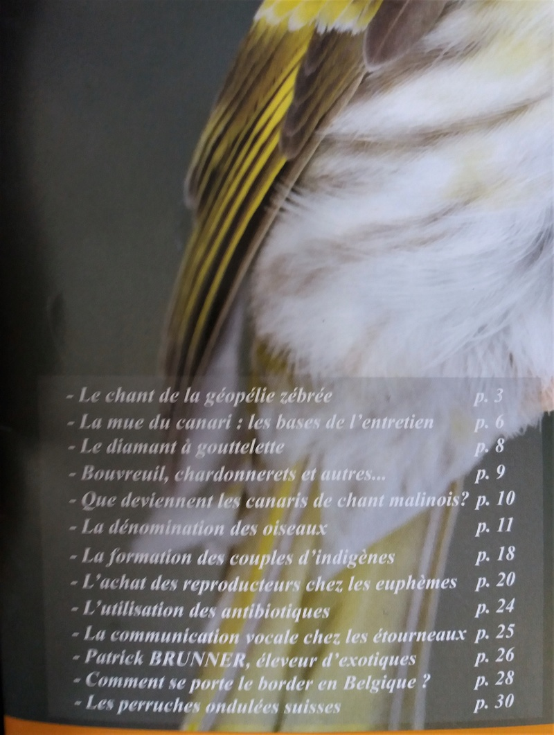 NATALE TÉLÉCHARGER DE LE GRATUITEMENT PDF MASSIMO CHARDONNERET LIVRE