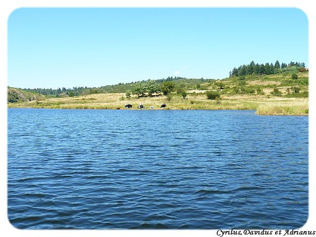 48h sur le Lac de Villerest P1040220