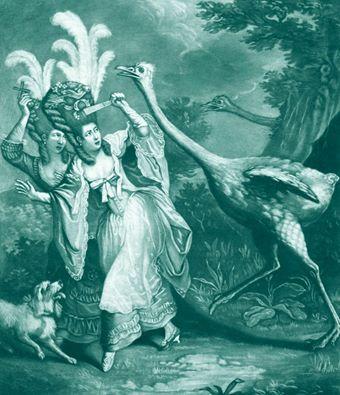 Plumes et Plumassiers au XVIIIe siècle 15400310