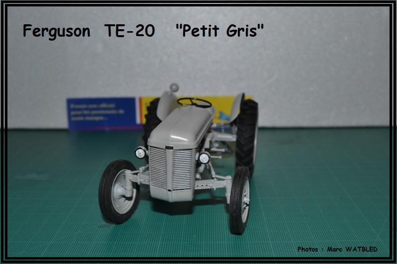 "Ferguson  TE -20   ""Petit Gris""  [Heller 1/24] Dsc_0146"