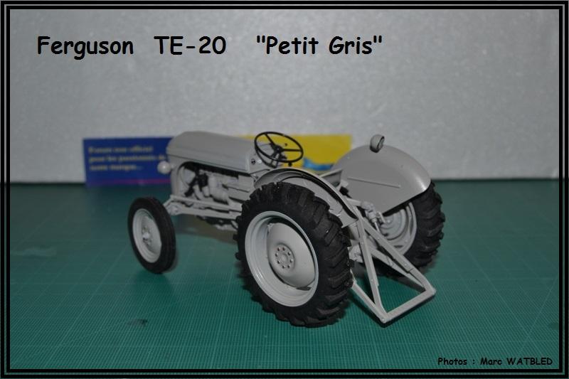 "Ferguson  TE -20   ""Petit Gris""  [Heller 1/24] Dsc_0147"