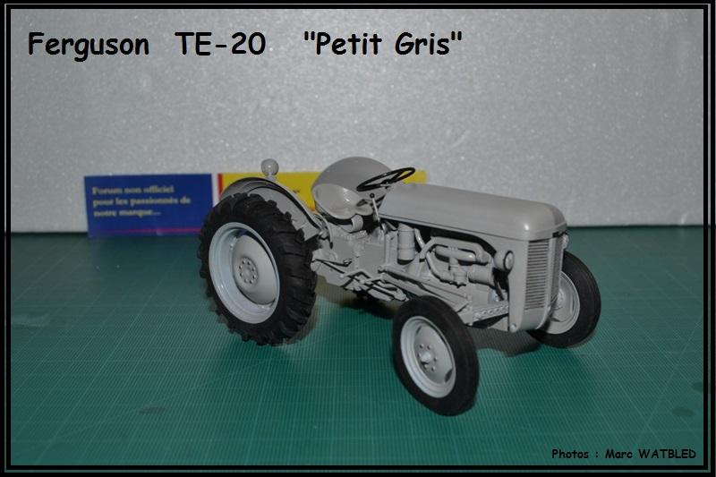 "Ferguson  TE -20   ""Petit Gris""  [Heller 1/24] Dsc_0148"