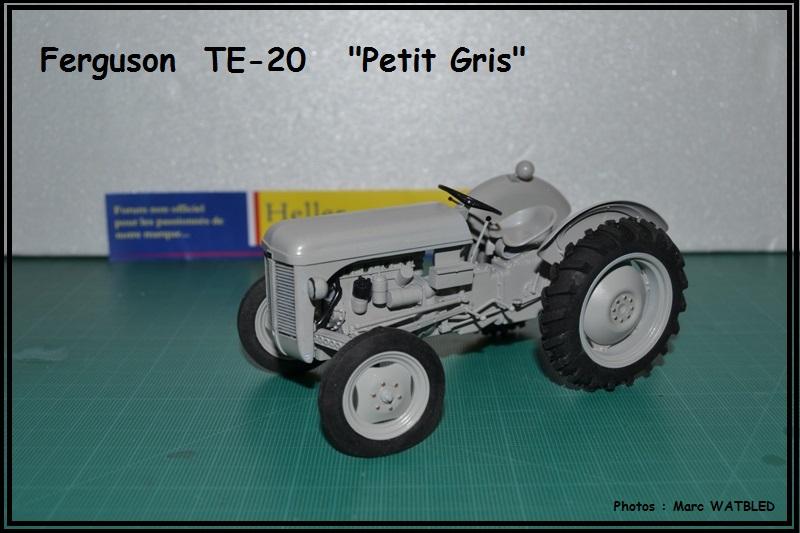 "Ferguson  TE -20   ""Petit Gris""  [Heller 1/24] Dsc_0151"