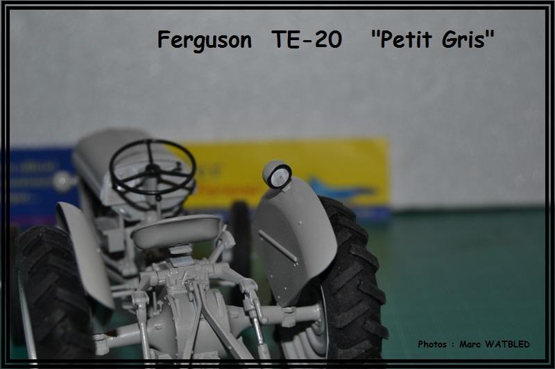 "Ferguson  TE -20   ""Petit Gris""  [Heller 1/24] Dsc_0152"