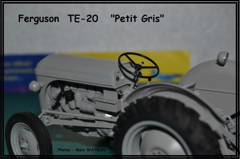 "Ferguson  TE -20   ""Petit Gris""  [Heller 1/24] Dsc_0154"