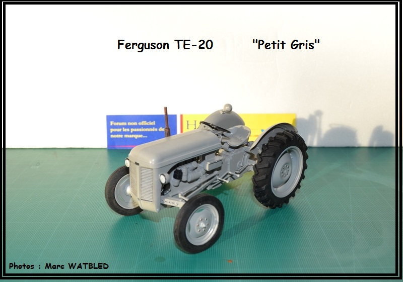 "Ferguson  TE -20   ""Petit Gris""  [Heller 1/24] Dsc_0175"