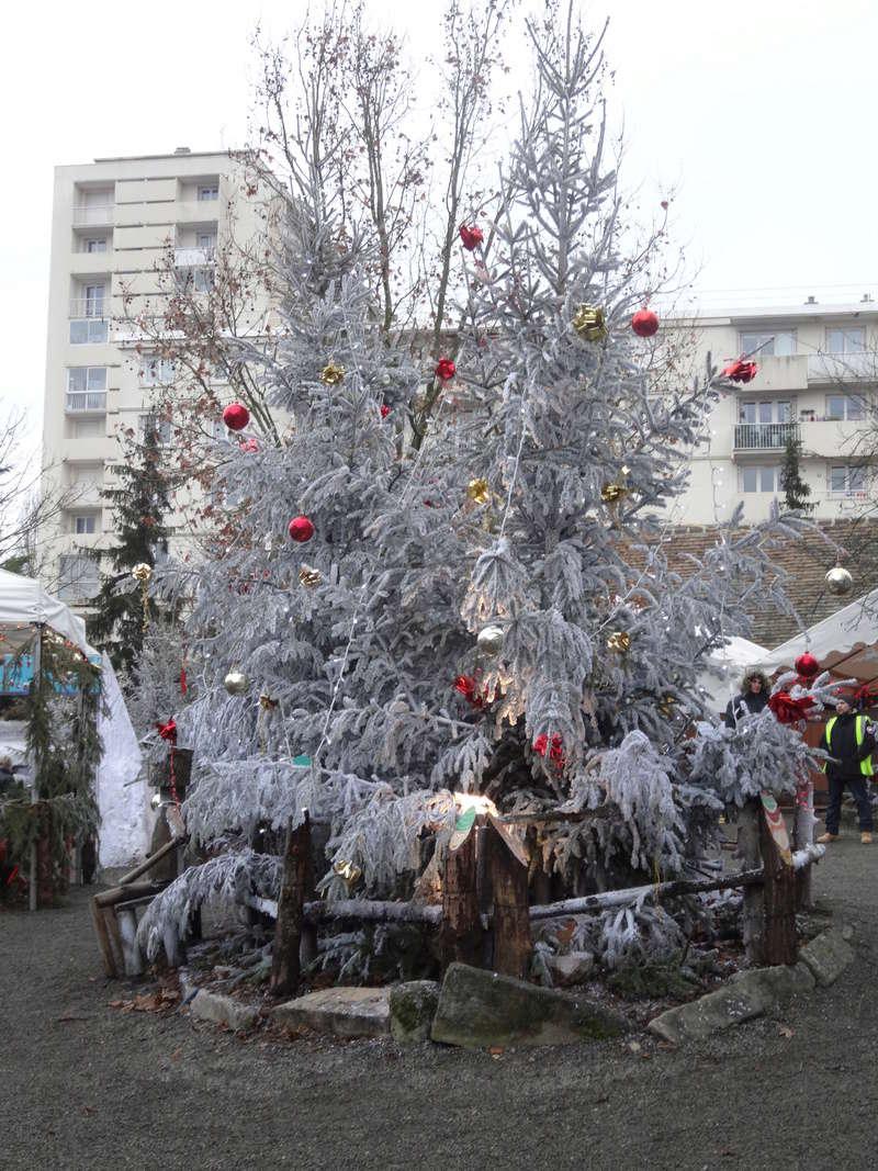 Joyeux Noël !!!!!!!!! Dsc04514