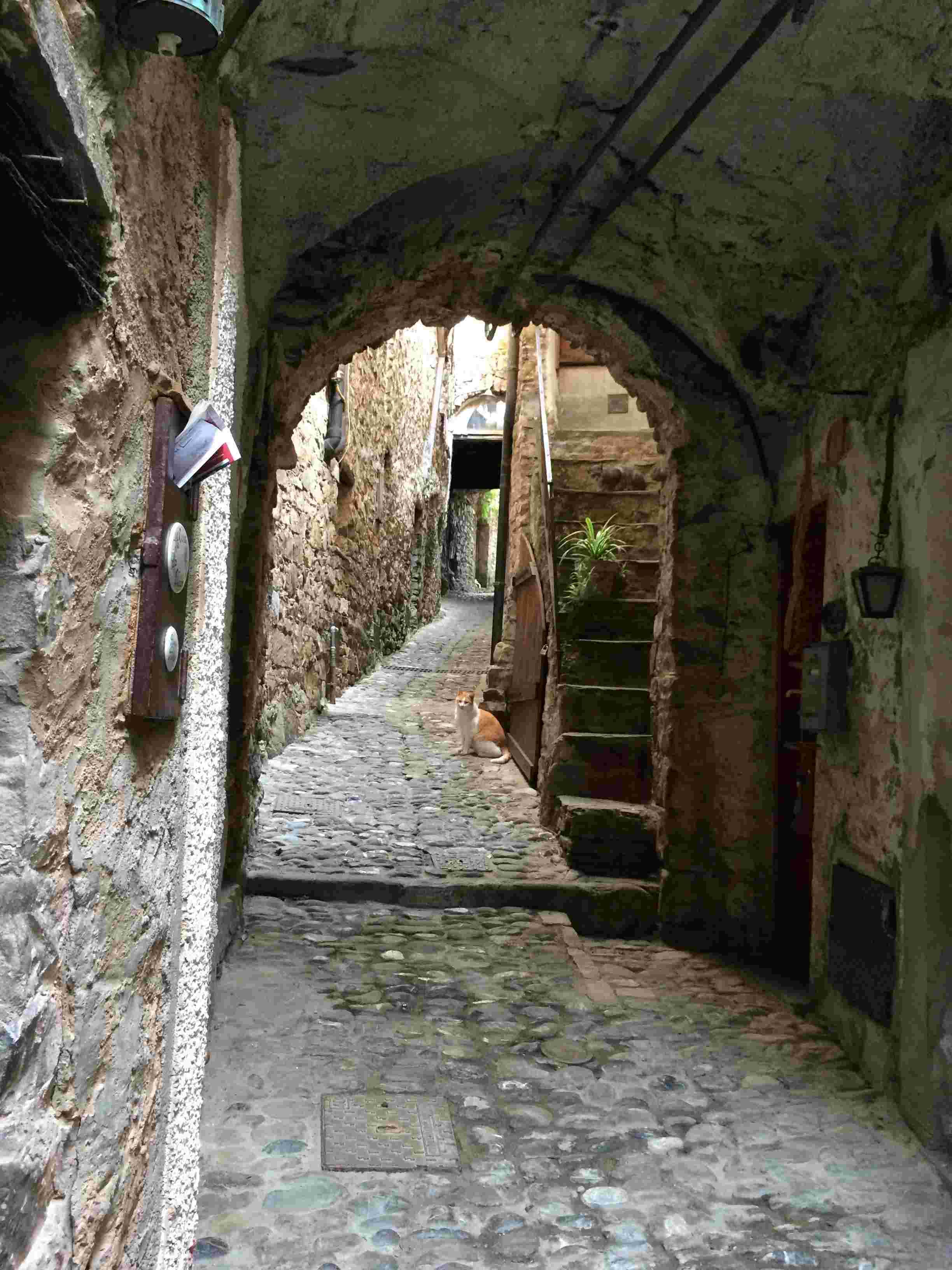 Apricale, le plus beau village d'Italie Aprica13