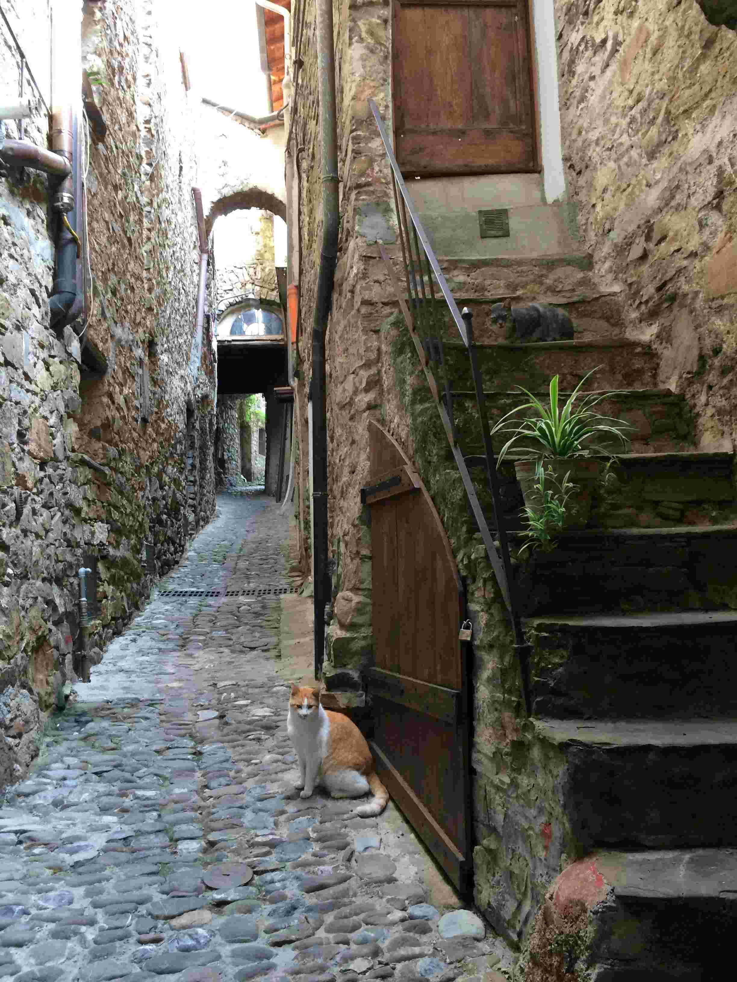 Apricale, le plus beau village d'Italie Aprica14