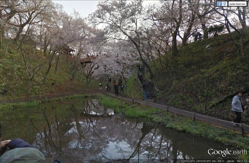 [Japon] - Les Sakuras 桜, les cerisiers symbole d'une nation Tsge_029