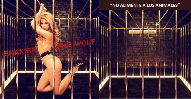 CAN´T REMEMBER TO FORGET YOU (Shakira-Rihanna) - Página 3 Elw3yo78
