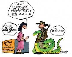dessin humouristique  Biomas10