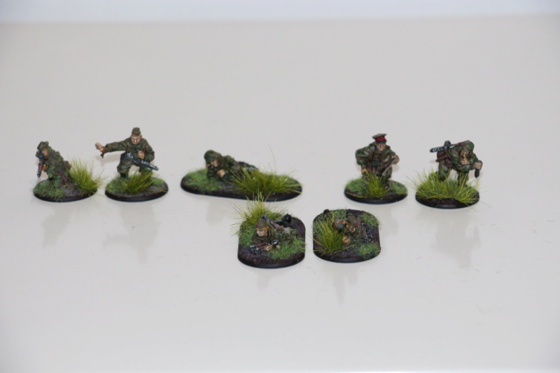 [Bolt Action] Nation : Russie Img_6018