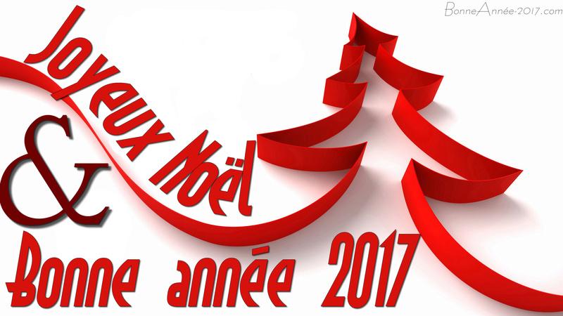 Voeux pour 2017 Joyeux10