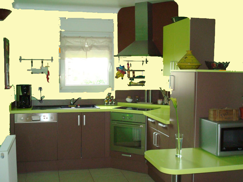 Idées couleur des murs pour cuisine vert amande et chocolat Cuisin11