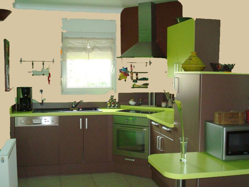 Idées couleur des murs pour cuisine vert amande et chocolat Cuisin13