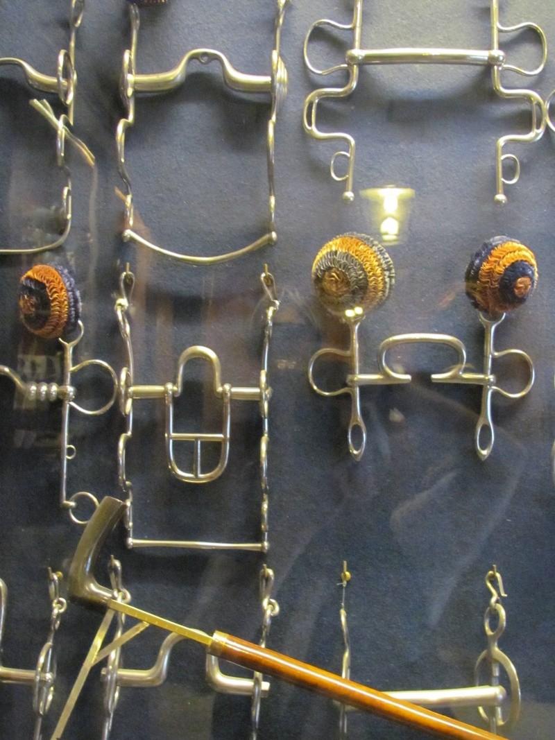 Le musée des équipages de Vaux le Vicomte Img_0118
