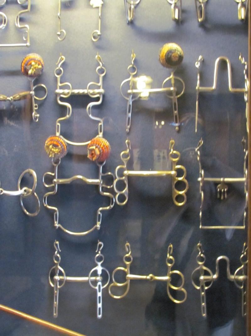 Le musée des équipages de Vaux le Vicomte Img_0119