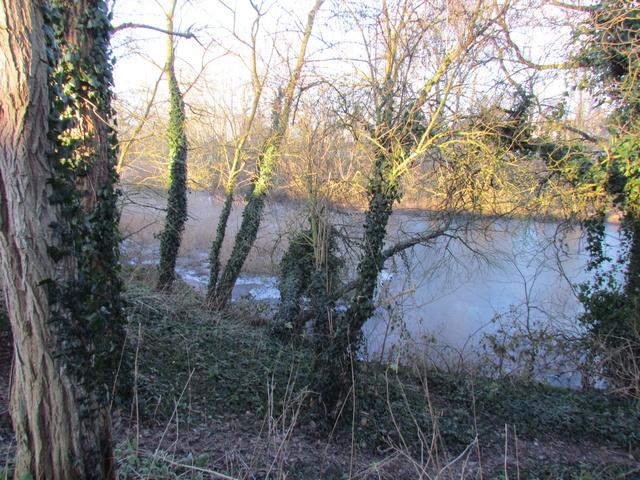ils ont pollué, mon lac.......... - Page 5 Hivers20
