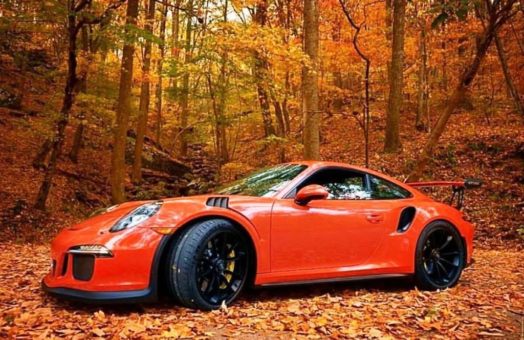 Porsche en automne - Page 8 15073410