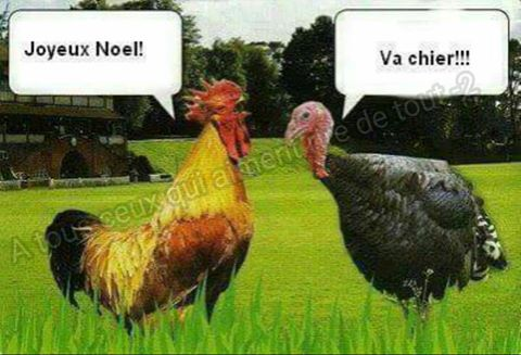 humour - Page 5 15179010