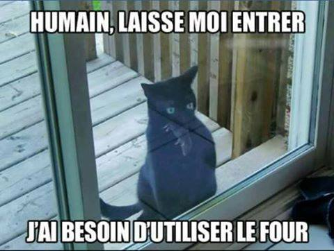 humour - Page 5 15181612