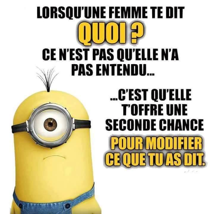 humour - Page 6 15202610