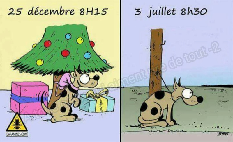 humour - Page 4 15271810
