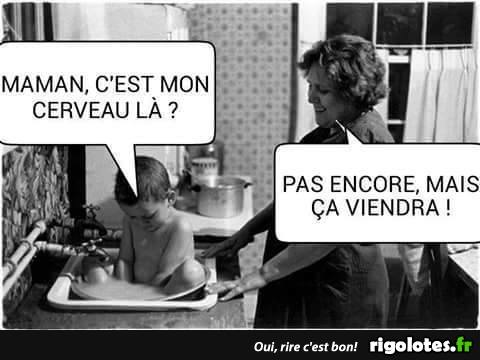humour - Page 40 15976911