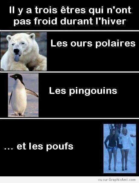 humour - Page 39 15978010