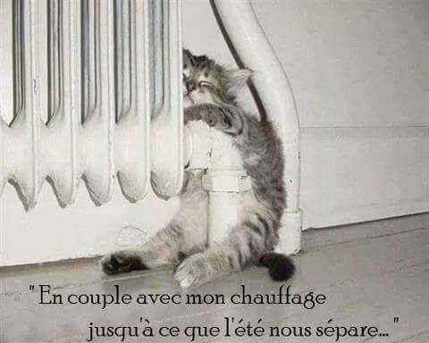 humour - Page 3 16114310