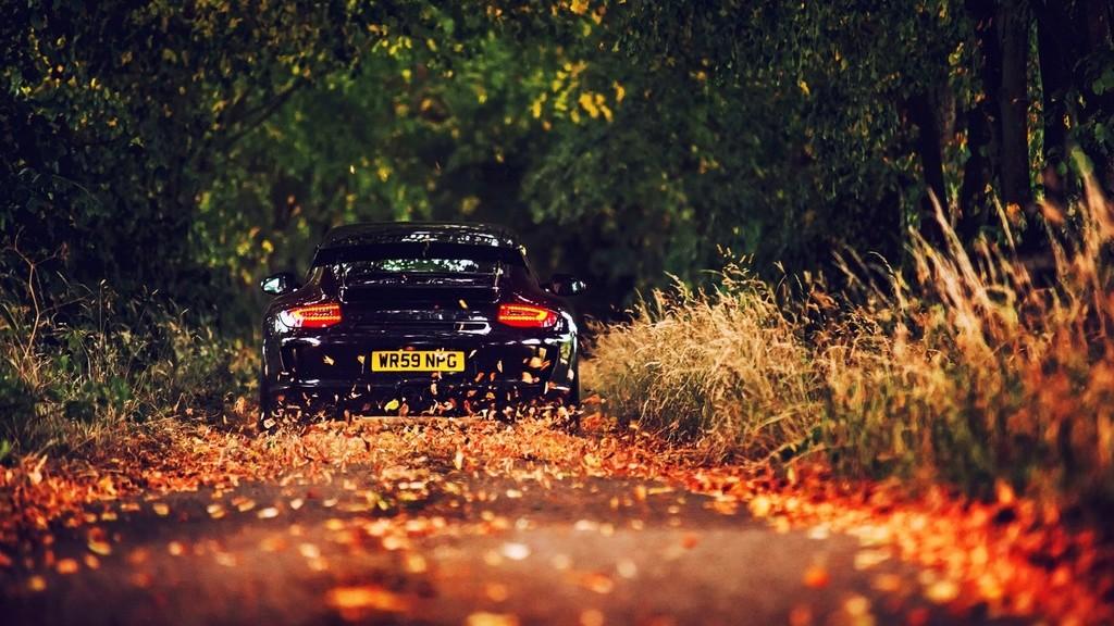 Porsche en automne - Page 8 Porsch11