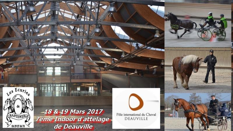 18 et 19 Mars 2017 - 7éme Indoor de Deauville avec son clip de synthese. Bandea11
