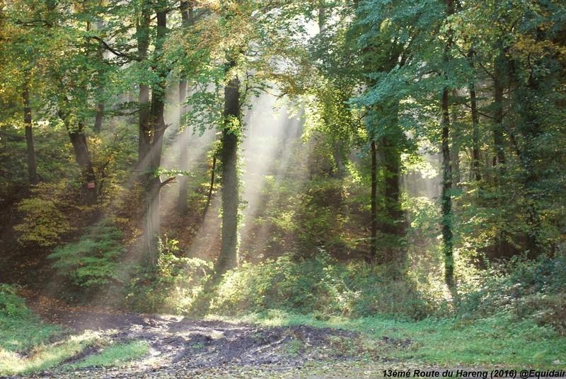 """Clip diaporama-""""Route du Hareng 2016"""" (29 et 30 Octobre 2016) Dsc_0110"""