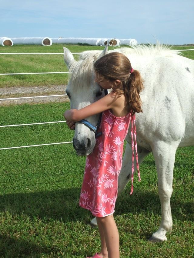 Mes chevaux!! Fin_ao15